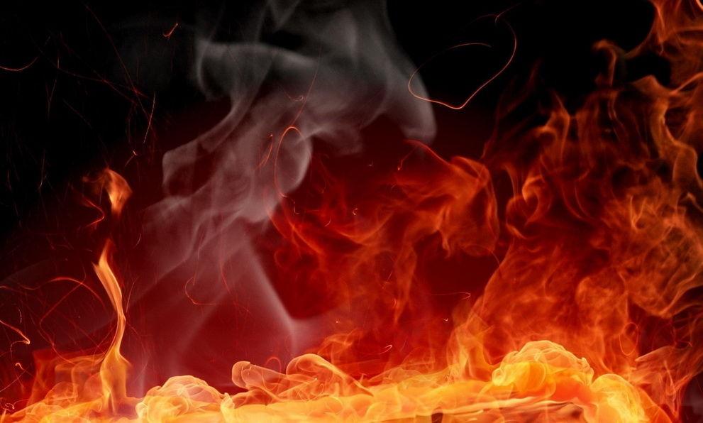 В иркутском приюте сгорели собаки