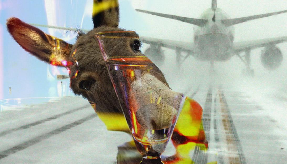 «Дайте закурить!». Дебошира сняли с рейса «Москва — Красноярск»